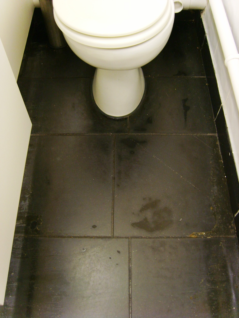 Black Honed Slate in WC Before